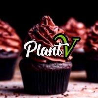 PLANT V
